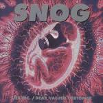 Lies Inc./Dear Valued Customer album by Snog