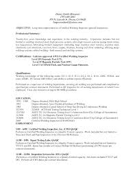project manager resume professional summary service resume project manager resume professional summary 3 engineering project manager resume samples examples professional welder resume samples