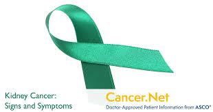 Kidney <b>Cancer</b>: Symptoms and Signs   <b>Cancer</b>.Net