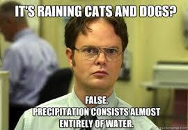 Schrute Facts   Know Your Meme via Relatably.com