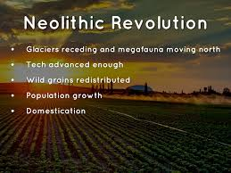 short essay on the neolithic revolution