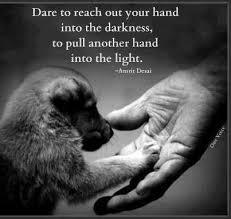 SAY 'NO' TO ANIMAL CRUELTY on Pinterest | Animal, Speak Up Quotes ... via Relatably.com