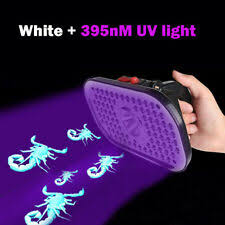 UV-Light 18650 Battery Type Camping & Hiking Flashlights for sale ...