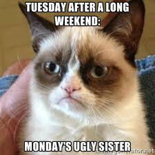TUESDAY AFTER A LONG WEEKEND: MONDAY'S UGLY SISTER - Grumpy Cat ... via Relatably.com