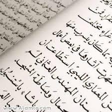 نتیجه تصویری برای زبان عربی