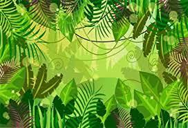 Yeele 10x7ft Tropical Photography Background Palm ... - Amazon.com