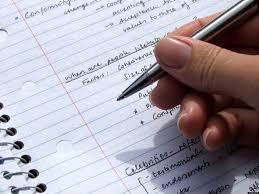 essay  custom essay 911