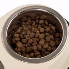 <b>Pets</b> at Home <b>Double</b> Diner <b>Dog Bowl</b> Cream Medium | <b>Pets</b> At Home