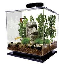 tetra cube aquarium kit 3 gallons office desk aquarium