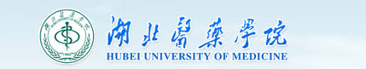Image result for hubei medical university