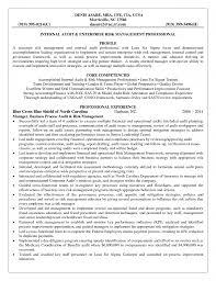 insurance adjuster resume sample insurance resume template resume insurance resume template life insurance agent resume examples