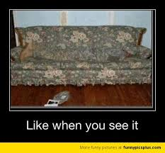 Only Like when you see it | Funny Pictures via Relatably.com
