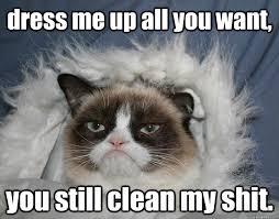 Grumpy cat parka memes   quickmeme via Relatably.com