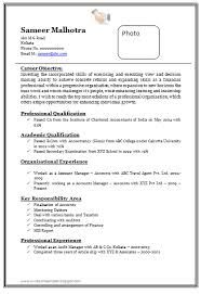 resume format doc file download download professional chartered accountant resume samples doc file