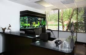 view in gallery black aquarium for the office aquarium office