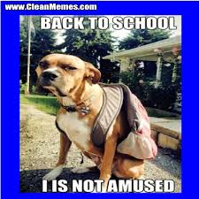 Back To School Dog | Clean Memes – The Best The Most Online via Relatably.com