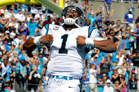 Image result for images of cam newton