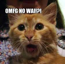 """A ginger cat looking shocked with the caption """"OMFG NO WAI?!"""""""
