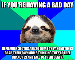 If you're having a bad day remember sloths are so dumb they ... via Relatably.com