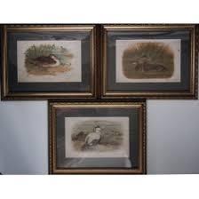 Старинные виды флоры и фауны, купить <b>гравюру</b> в подарок ...