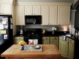 paint kitchen cabinets prokitchen  diy kitchen cabinets after kitchen design