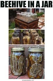 jar crafts home easy diy: diy mason jar beehive  diy mason jar crafts check it out at https