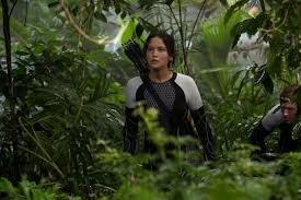 best images about the hunger games series 17 best images about the hunger games series quarter quell josh hutcherson and catching fire