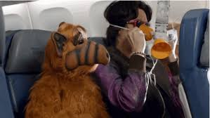 Image result for masks on airplanes