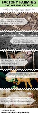 best images about intensive animal farming food not to think about where your groceries come from is the top technique marketers in the food industry rely on to hid the cruelty behind factory farming