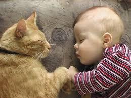 و هل هناك اجمل من براءة الطفولة ؟؟؟ images?q=tbn:ANd9GcR