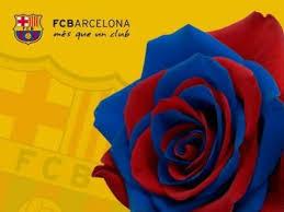 Felicitacions a tots els catalans pel dia de Sant Jordi. Images?q=tbn:ANd9GcRgPsiVQR6YUJJIkvo4jSG9_S5MVZkSrv0wfw4HUpxZtKexHMv4