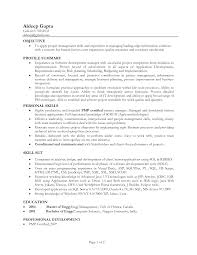 profile sample resume profile printable of sample resume profile full size