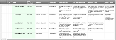 how to create the perfect project status report checklist screenshot