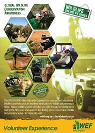 wef volunteer experience wildlife education foundation wef wef volunteer experience wef volunteer experience