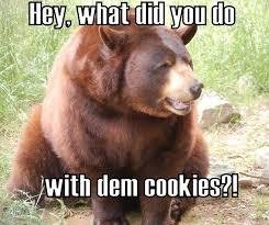 Bear Meme | Funny Pictures, Quotes, Memes, Jokes via Relatably.com