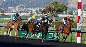 <b>Horse racing</b> - Wikipedia