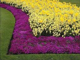 Small Picture Invisible Flower Bed Borders for Natural and Beautiful Garden Design