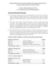 resume bus attendant cv resume cv example example cv resume cv resume templates parking lot attendant parking lot attendant resume