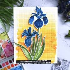 Naifumodo <b>Clivia Flower</b> Stamps and <b>Dies</b> for Scrapbooking Card ...