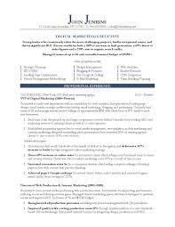 sample resume s executive resume templates sample resume s executive resume sample 13 senior s executive resume career 10 marketing resume samples