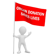 5 Organ Donation Myths: My License Says I'm A Donor, But Why ...