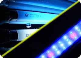 <b>Люминесцентные лампы</b> VS светодиодов для <b>аквариума</b>