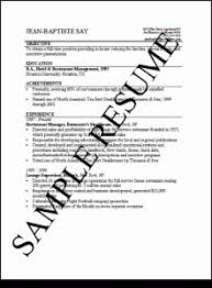Spaceballs    how to  make   write a resume in       interviews     Template
