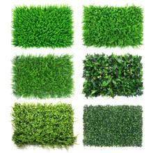 grass lawn green backdrop