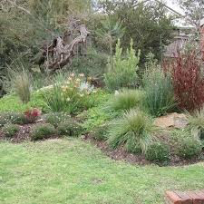 Small Picture Best 25 Australian native garden ideas only on Pinterest