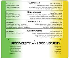 a social ecological perspective on food security and biodiversity a social ecological perspective on food security and biodiversity conservation ideas for sustainability