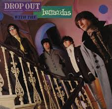 <b>Barracudas</b> - <b>Drop</b> Out With The Barracudas | Releases | Discogs