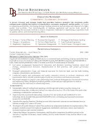 resume summary statement example latest format business executive it