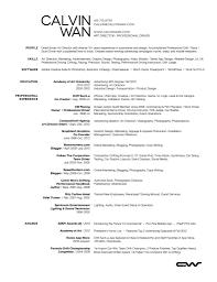 child care director resume s director lewesmr sample resume resume exles artistic director for profesional