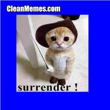 Surrender Cat   Clean Memes – The Best The Most Online via Relatably.com